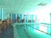 18 травня в спортивному клубі, басейні  «Дельфін» м. Бахмут відбулися змагання, присвячені Дню Європи.