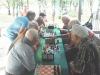 24 серпня в міському парку пройшов шаховий турнір серед найсильніших шахістів міста, в якому взяло участь 24 спортсмена.