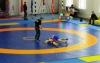 Всеукраїнський турнір з вільної боротьби