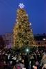 27 грудня 2013 року ввечері на центральній площі міста Артемівська відбулося урочисте відкриття головної новорічної ялинки.