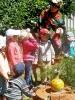 Коллектив детского сада №34 «Тополька» создал поляну сказок. Для родителей подготовлен путеводитель по «Долине сказок» с ценными советами и рекомендациями о том, как «играть в сказки».