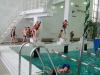 З метою вивчення навичок плавання способом кроль на грудях та на спині, стрибків у воду та перебуванню і пересуванню під водою у басейні спорткомплексу ДП «Артемсіль» пройшли спортивні змагання «Золота рибка» серед учнів 2, 4 класів.