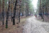 28.12.2019 р. в м. Святогірськ пройшов особистий заключний етап Чемпіонату  Донецької області зі спортивного орієнтування  «Різдвяні старти».